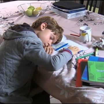 réforme scolaire au Groland